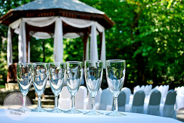 ślub w plenerze - bezalkoholowy toast w miejscu publicznym